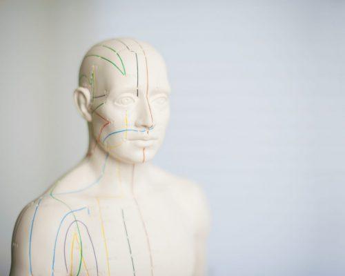 Akupunkturpraxis für ganzheitliche Gesundheit